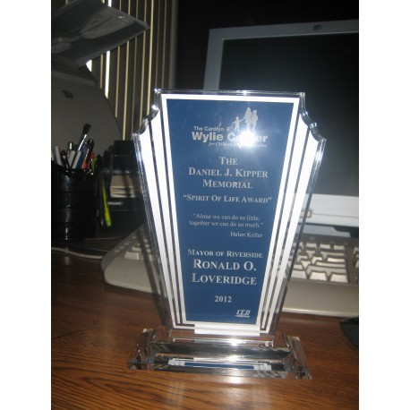 Custom made awards designed & made by LTD